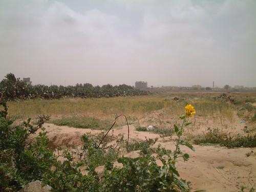 Rafah. Il confine con l'Egitto