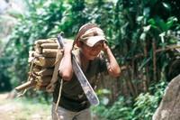 Rapporto sul lavoro minorile in centro America