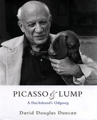 Un bassotto la musa segreta di Picasso