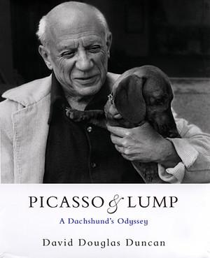 foto copertina libro