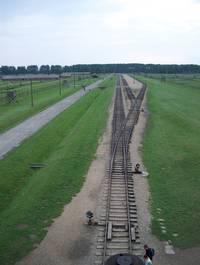 il binario di Birkenau