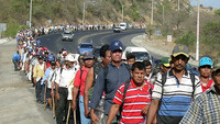 Nicaragua - Bananeros contaminati dal Nemagón nuovamente in marcia