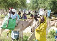 Dislocati chadiani raccolti in un campo profughi