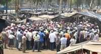 Nicaragua - Spari contro i bananeros