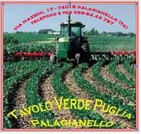 Tavolo Verde Puglia